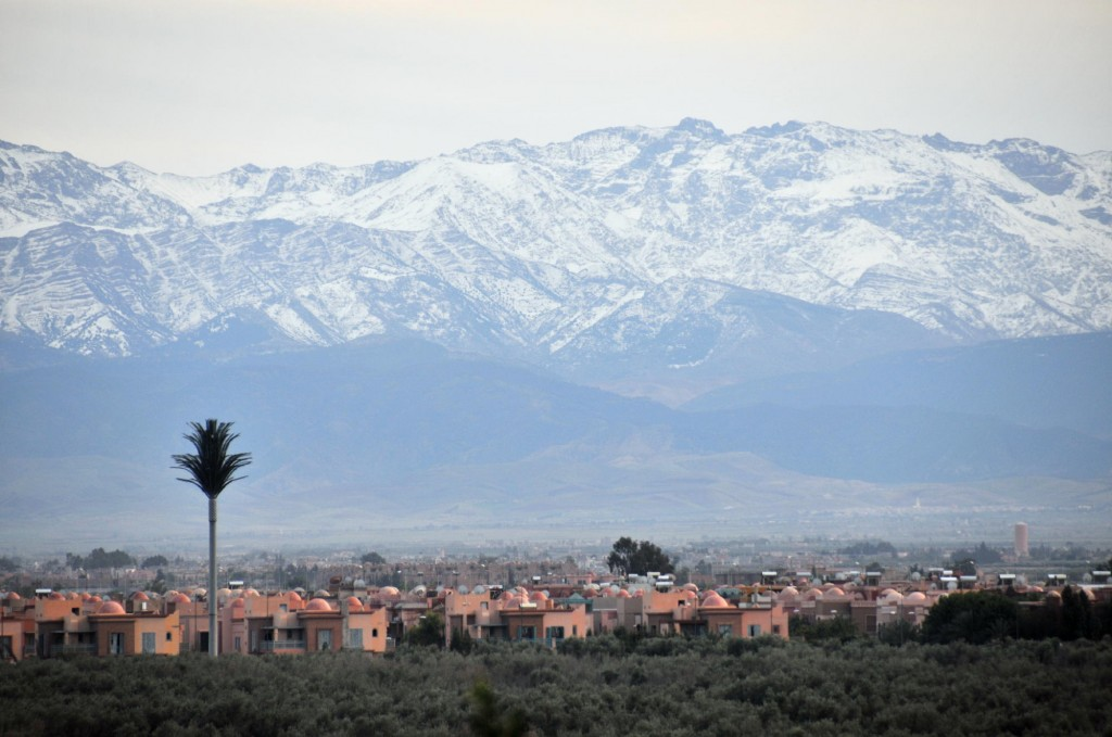 Marrakech Skyline. Photo: Michael J. Totten