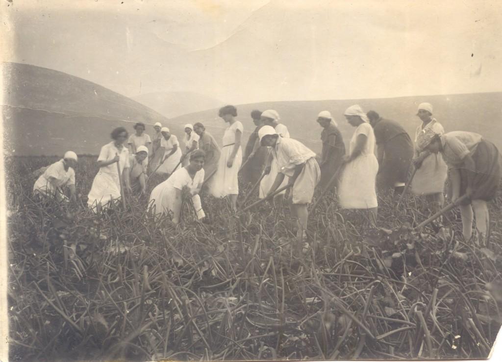 נשים בשדה 1924