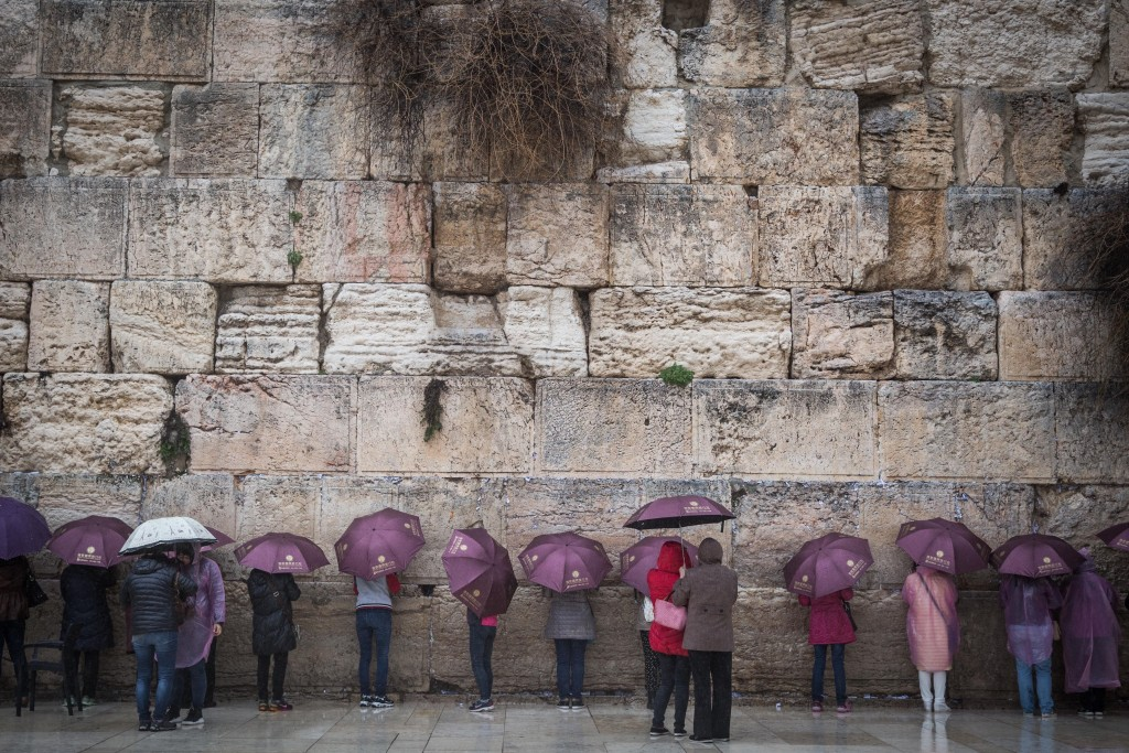 A group of tourists take cover under matching umbrellas on a rainy day as they visit the Western Wall, February 7, 2016. Photo Hadas Parush / Flash90