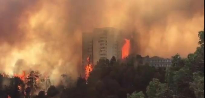 haifa-fire