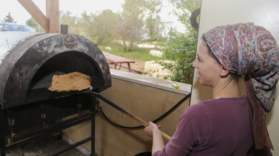 "Jewish women preparing Matzot at Beit Midrash ""Beor Panich"" for the eight-day Pesach holiday (Passover) in Gush Etzion on April 2, 2017. Passover commemorates the Israelites' exodus from Egypt some 3,500 years ago. Because of the haste the Jews left Egypt, the bread they had prepared for the journey did not have time to rise. To commemorate their ancestors' plight, religious Jews do not eat leavened food products throughout Passover. Gershon Elinson/Flash90"