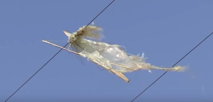 FeaturedImage_2018-08-14_141121_YouTube_Terror_Kite