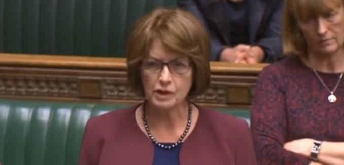 Labour MK Louise Ellman Blasts PA Incitement