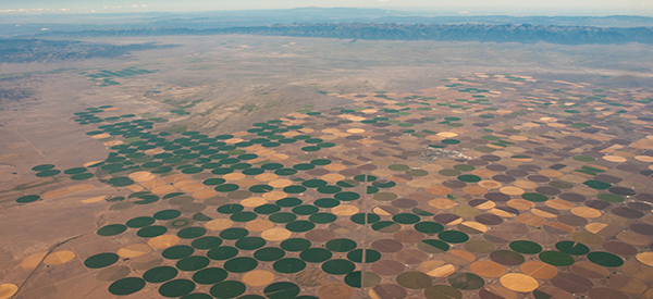 Making the desert bloom somewhere over West Texas?